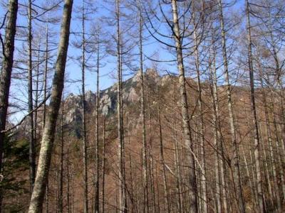 登山道途中の瑞牆山
