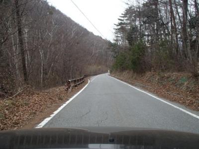瑞牆山荘までの舗装道
