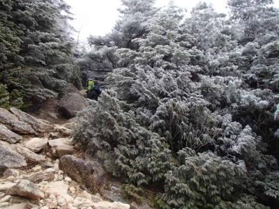 岩場と霧氷