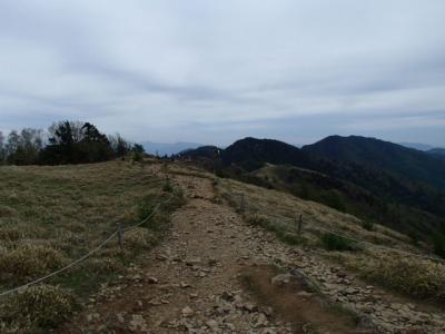大菩薩嶺稜線