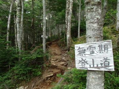 薬師岳までの登山道