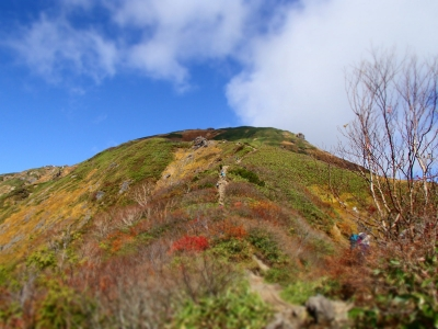 谷川岳への登山道