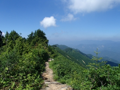下台倉山付近の下山道