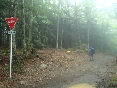 途中の林道横切り