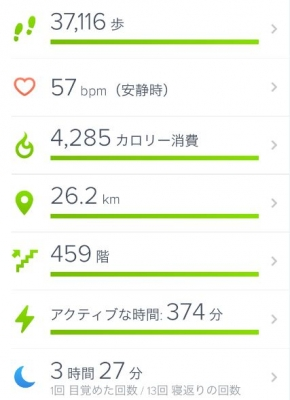 fitbit 全体管理