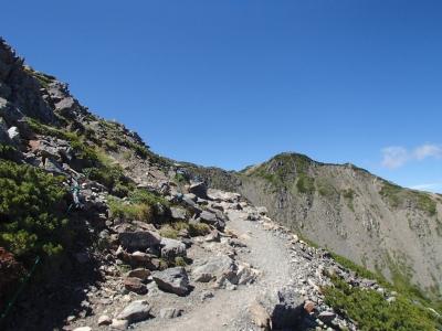 仙丈ケ岳の山頂が見えた