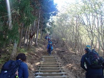 丸太の階段.JPG