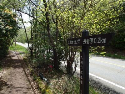 九州自然歩道後半.JPG