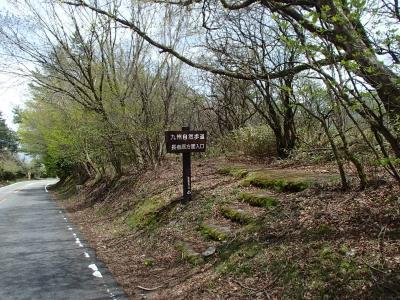 九州自然歩道中盤.JPG