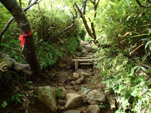 山頂への急登.JPG