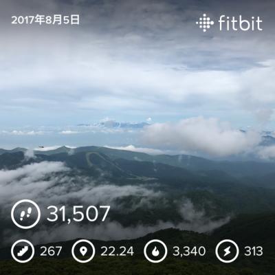 磐梯山fitbitデータ