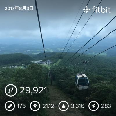 安達太良山fitbitデータ