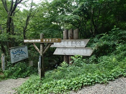 あだたら渓谷自然遊歩道(夏山).JPG
