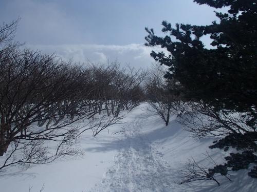 勢至平周辺(冬山).JPG