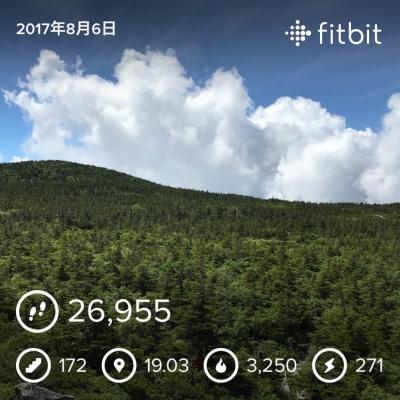 吾妻山 fitbitデータ