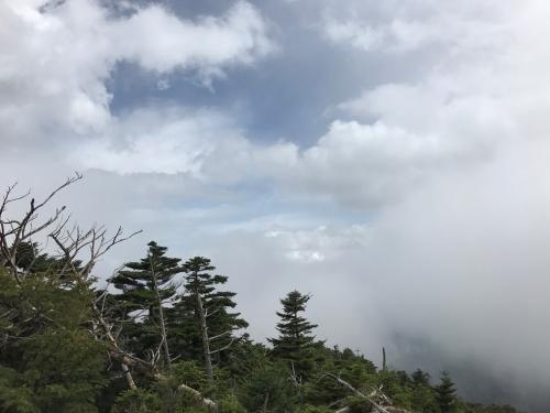 八経ヶ岳山頂直下で晴れ間.JPG