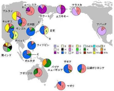 東アジアのミトコンドリアDNAの分布
