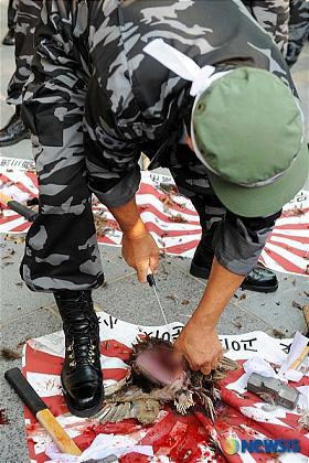 韓国 竹島 抗議デモ キジ