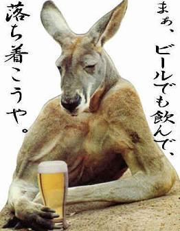 まあ ビールでも飲んで落ち着こうや カンガルー