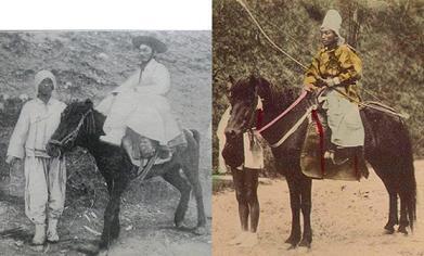 韓国 朝鮮馬と日本馬