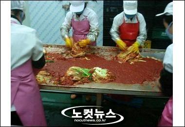 韓国 キムチ製造工場