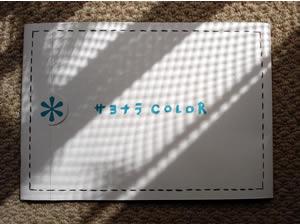 さよならカラーのパンフレット