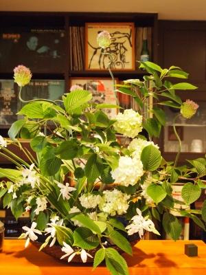 今週の花ー1.jpg