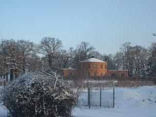 初日雪お城