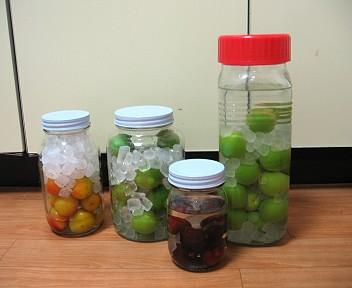 梅酒と果実酒色々