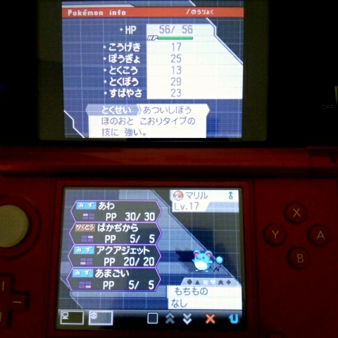 C360_2012-08-06-10-33-21.jpg