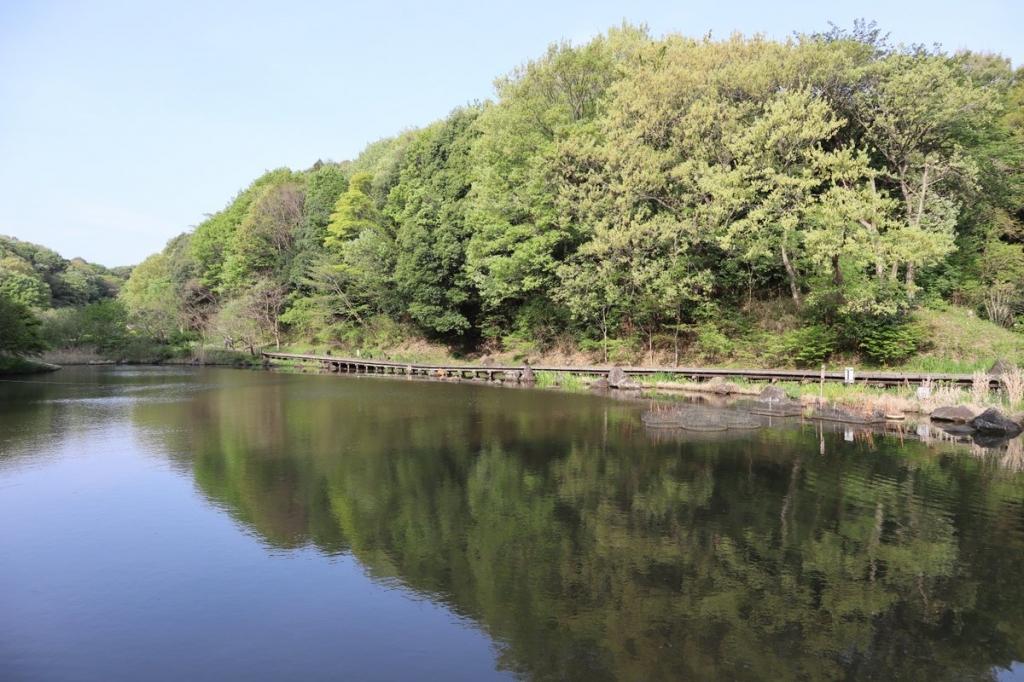四季の森公園の池・横浜観光案内と写真・