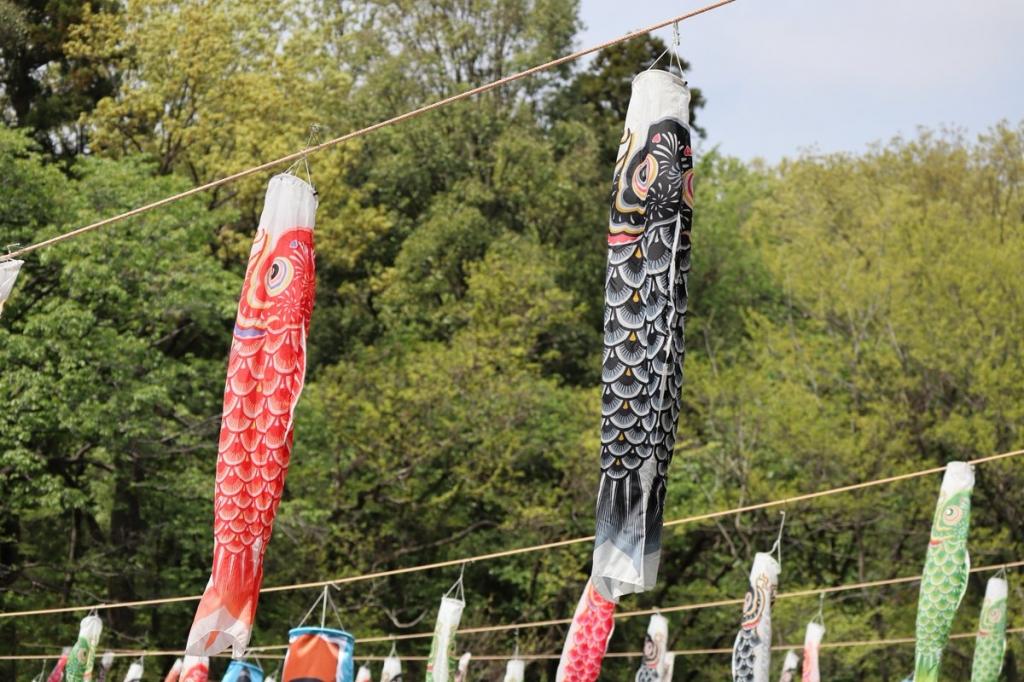 鯉のぼり1-横浜観光案内と写真・ブログ
