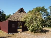 ねむの木学園2