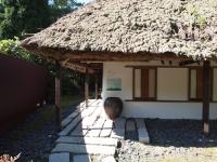 ねむの木学園3