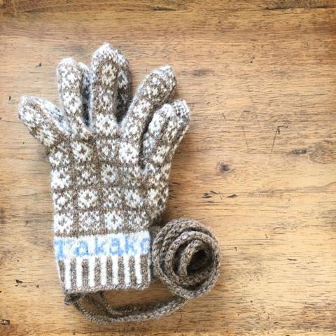 彼女の手袋