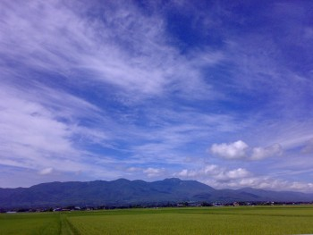 田んぼが広がる風景