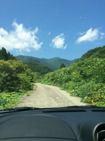 石名天然杉への道