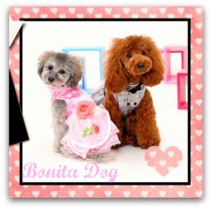 犬服プリンセスドレス