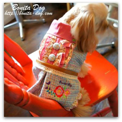 小型犬のお洋服♪