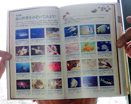 地球の歩き方フィリピンの魚図鑑