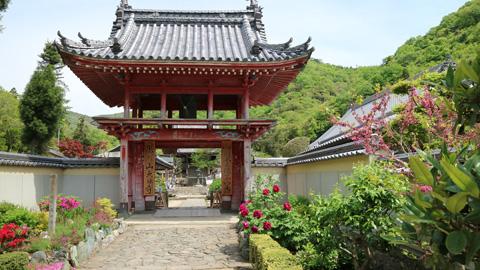 4番 大日寺