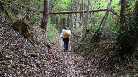 雲辺寺登山口