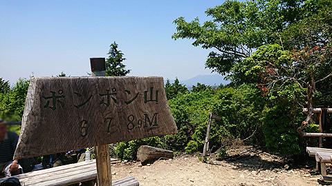 ポンポン山