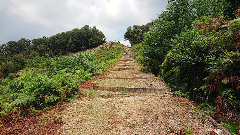 松ヶ崎西山