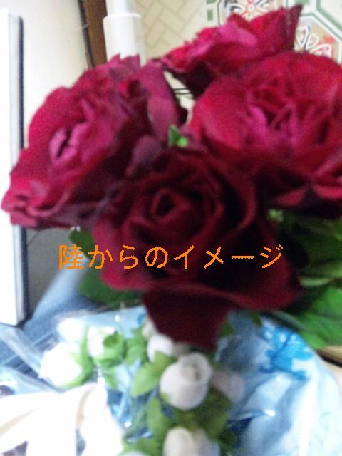 DVC00609.jpg