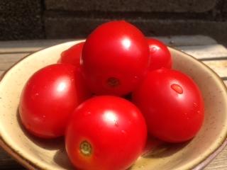 完熟したトマトかんたんルビーノ