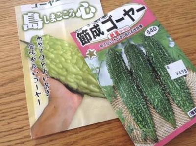 harunotanemaki5.jpg