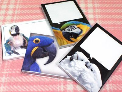 インコの写真のメモ帳