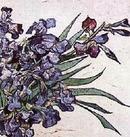 クリックすると 「ゴッホ 花瓶のアイリス」の全体像がご覧いただけます。 Vase of Irises, Strauss 1890 by Vincent van Gogh