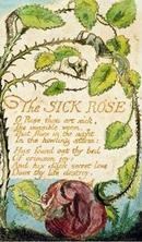 The Sick Rose, from Songs of Innocence by William Blake 「病める薔薇」